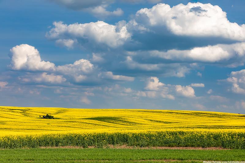 Moravia-IMG_4567-web.jpg