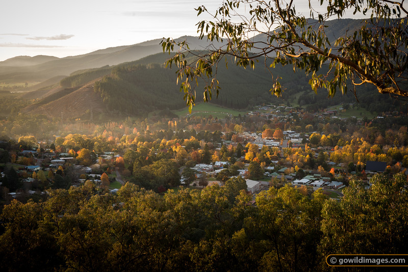 Bright's Autumn colours from Huggins Lookout