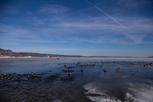 winter in Fontana