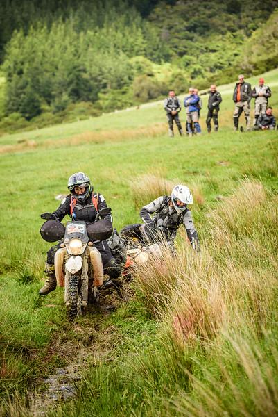 2019 KTM New Zealand Adventure Rallye (1232).jpg