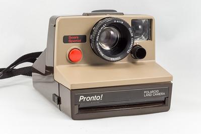 Pronto!, 1977