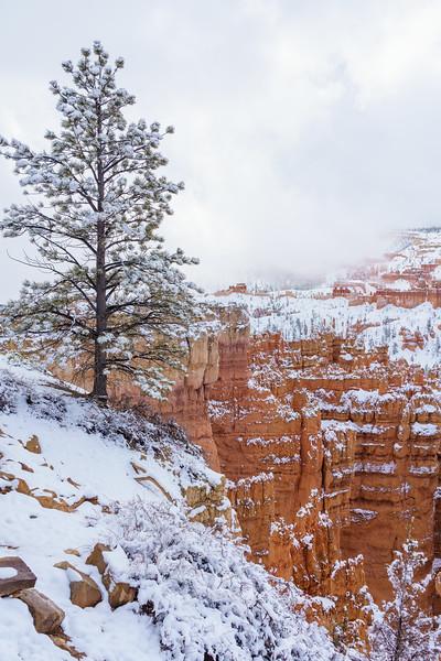 200319 - Bryce Canyon - 00416-HDR.jpg