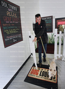 Downtown Dog Lounge on Capitol Hill thrives in business as neigbhoring South Lake Union's population grows