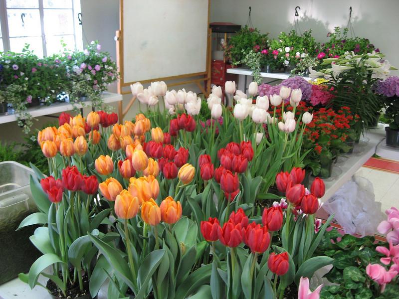 Easter 2011 033.jpg