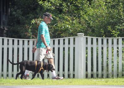 Tewksbury dog walker  071219