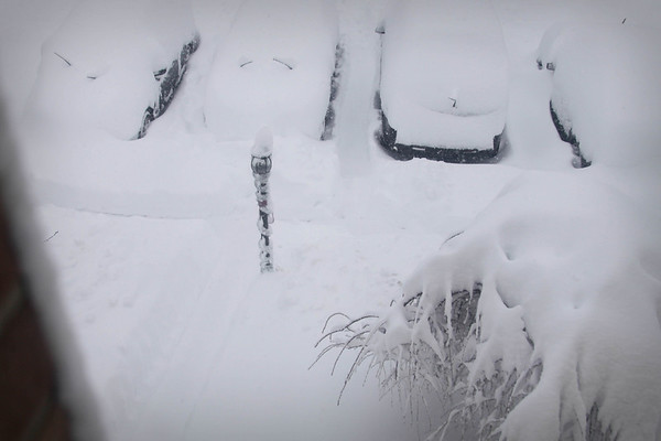 Snowpocalypse, 2010