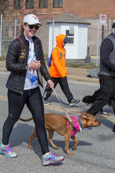 Richmond Spca Dog Jog 2018-766.jpg