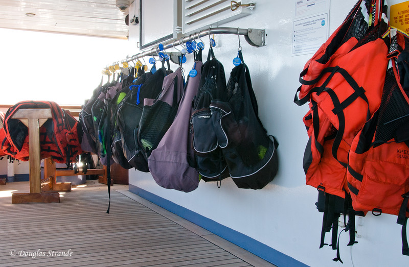 Snorkel gear rack on the Xpedition