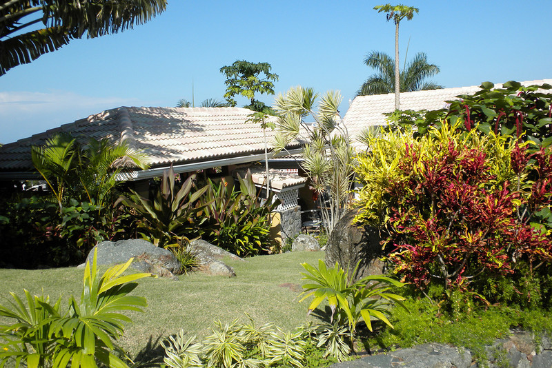 Gardens at the Estate St Peter Greathouse in St Thomas