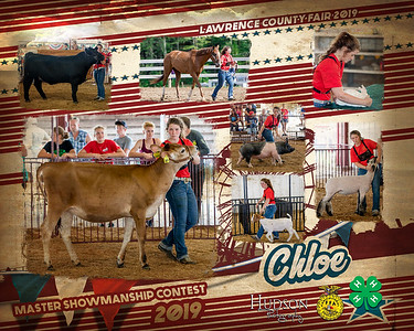 Master Showmanship Collages