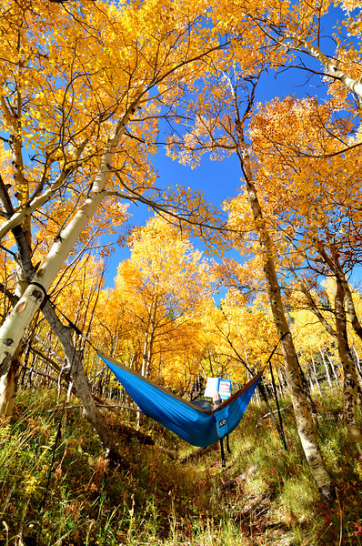 ENO Hammock at Caribou Ranch.JPG