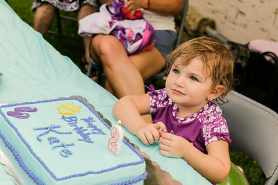 2014 - Kate Weber's 2nd Birthday Party - June 22, 2014