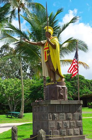 2014 Hawaii