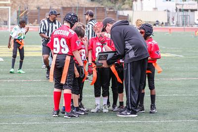 D8 Falcons