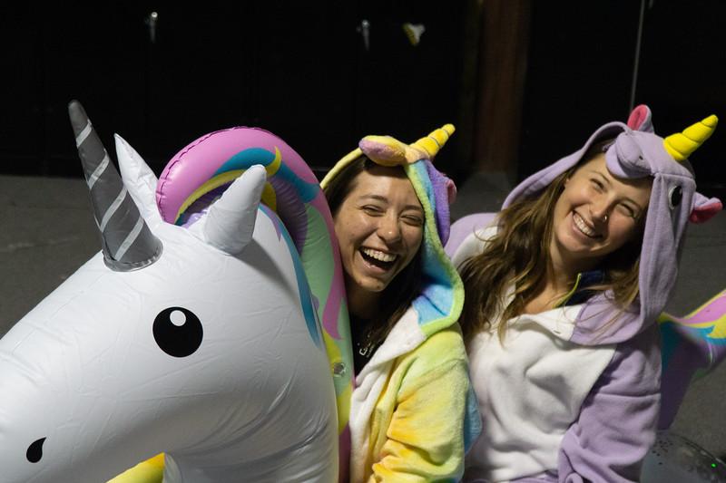 hypoxic-unicorn-06142.jpg