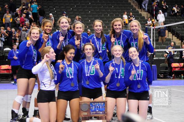 2015 Girls Volleyball