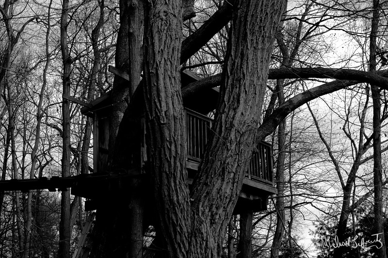 Treehouse 2011 bw close up (1 of 1).jpg