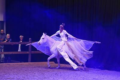 """Messe """"Hund&Pferd"""" in Dortmund"""