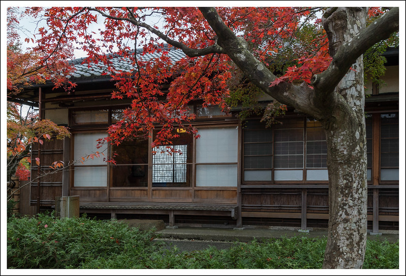 Hakone Museum-0652.jpg
