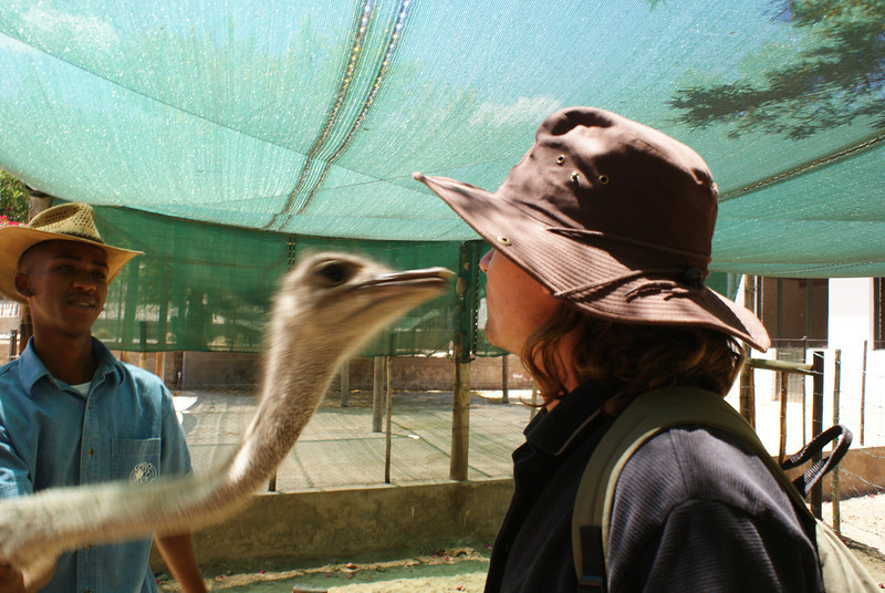 This was scary.  They called it an ostrich kiss and you'd put the food pellet in your lips.  Eek.