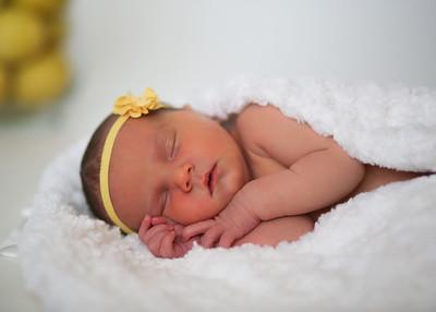 Raelynn's Newborn Portraits