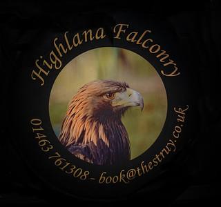 Highland falconry