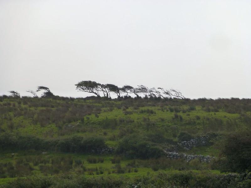 Burren Wind Effects.jpg