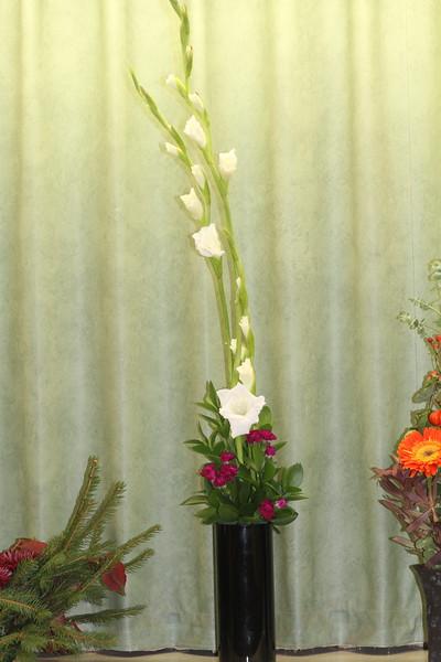 November, Provisional, American Traditional Line Design, Lori Vik