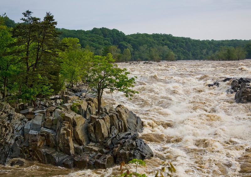 Great Falls, Virginia  05/01/2011