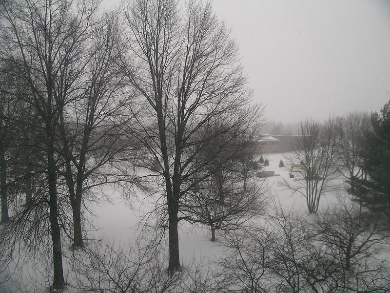 snow-feb1307.JPG