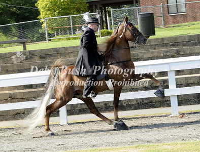 CLASS 6 AMATEUR OWNED & TRAINED SPECIALTY