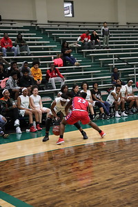 Naaman Forest Womens Basketball