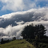 Ominous Mount Cargill Fog