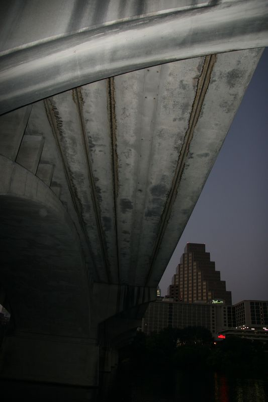 Under the bridge the bats fly out of