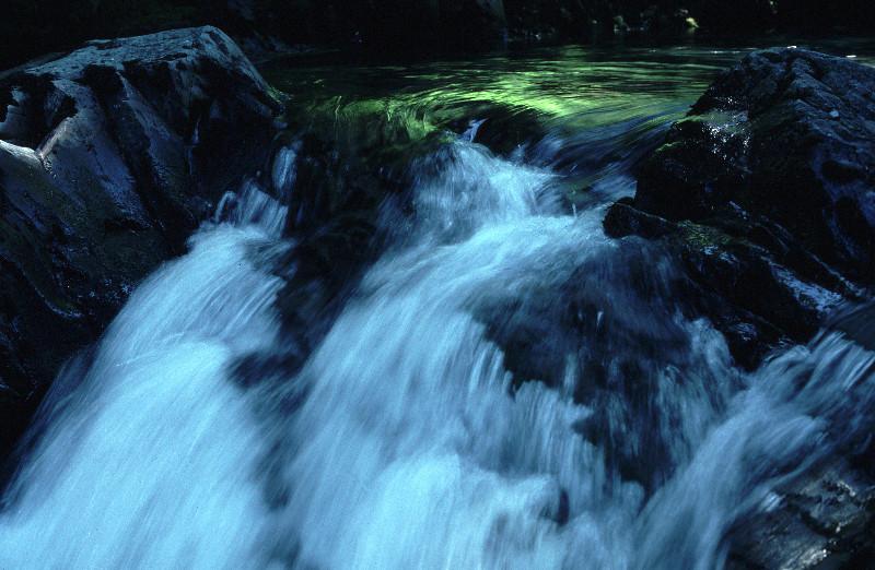 Dosewallips Falls in Washington State.