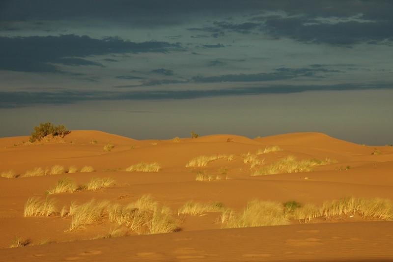 Karakum Desert Sunset - Karakum Desert, Turkmenistan