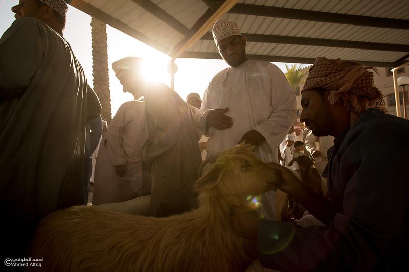 FE2A3671-Nizwa- Oman.jpg