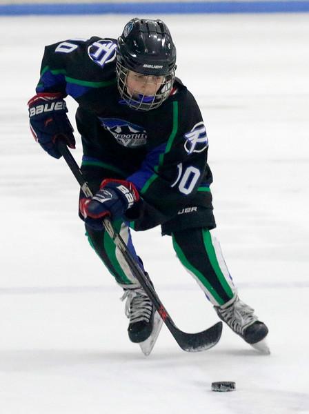 2016-Feb_12-Hockey-JPM1458.jpg