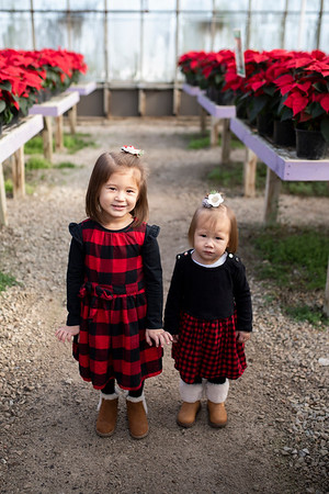 Caves Family | Christmas Green House Family Session