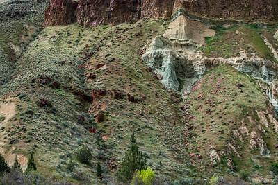 John Day Fossil Beds * Sheep Rock Unit