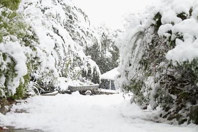2012 June Snow