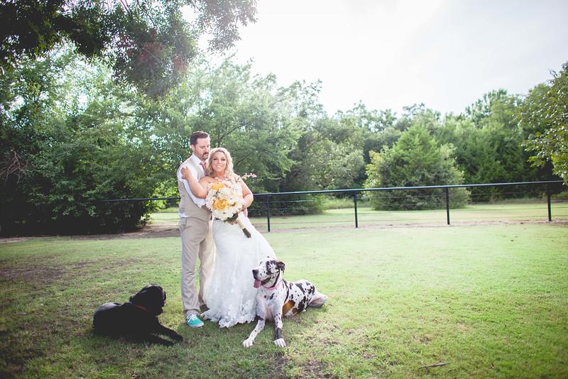2014 09 14 Waddle Wedding - Bride and Groom-797.jpg