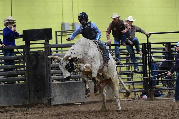 Bull Riding School/Bull Fighting School - Feb. 26