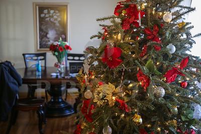 Bartley Christmas Family Shoot