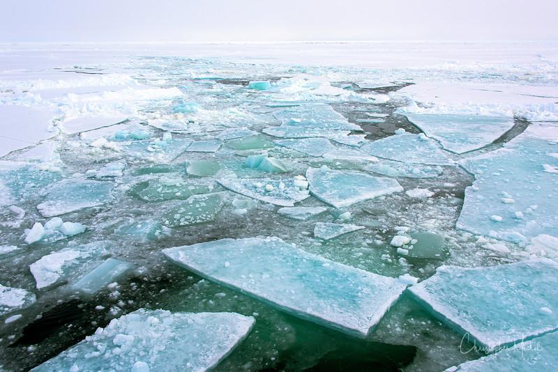 Polar Ice.jpg