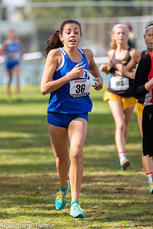 Cross Country at Darby