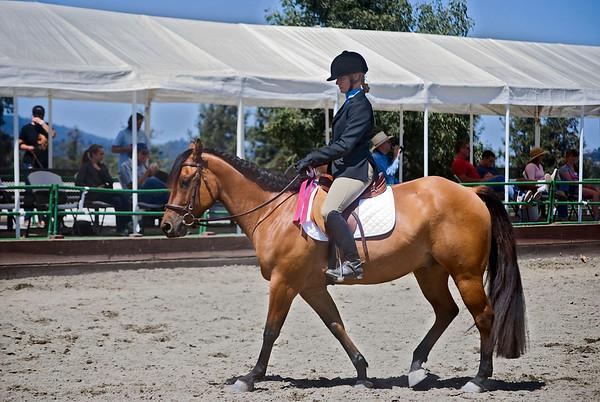Woodside Horse Show 2010
