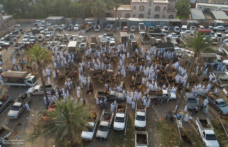 DJI_0048- Alrustq-Habtah- Oman.jpg