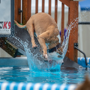 07-14-2018 Illinois Southtown K9 NADD AKC National Qualifier Dock Diving