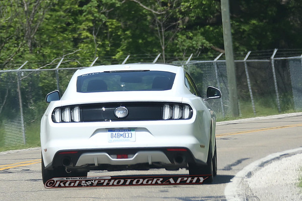 European Mustang Clear Tail-Lights